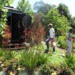 Terra Sculpture @ L.a. Arboretum